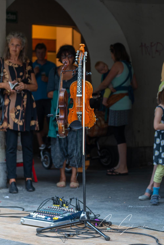 Hardanger Fiddle (Vrang)
